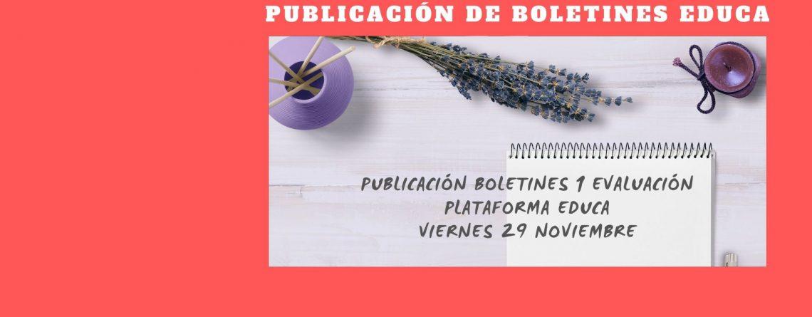Publicación de boletines EDUCA